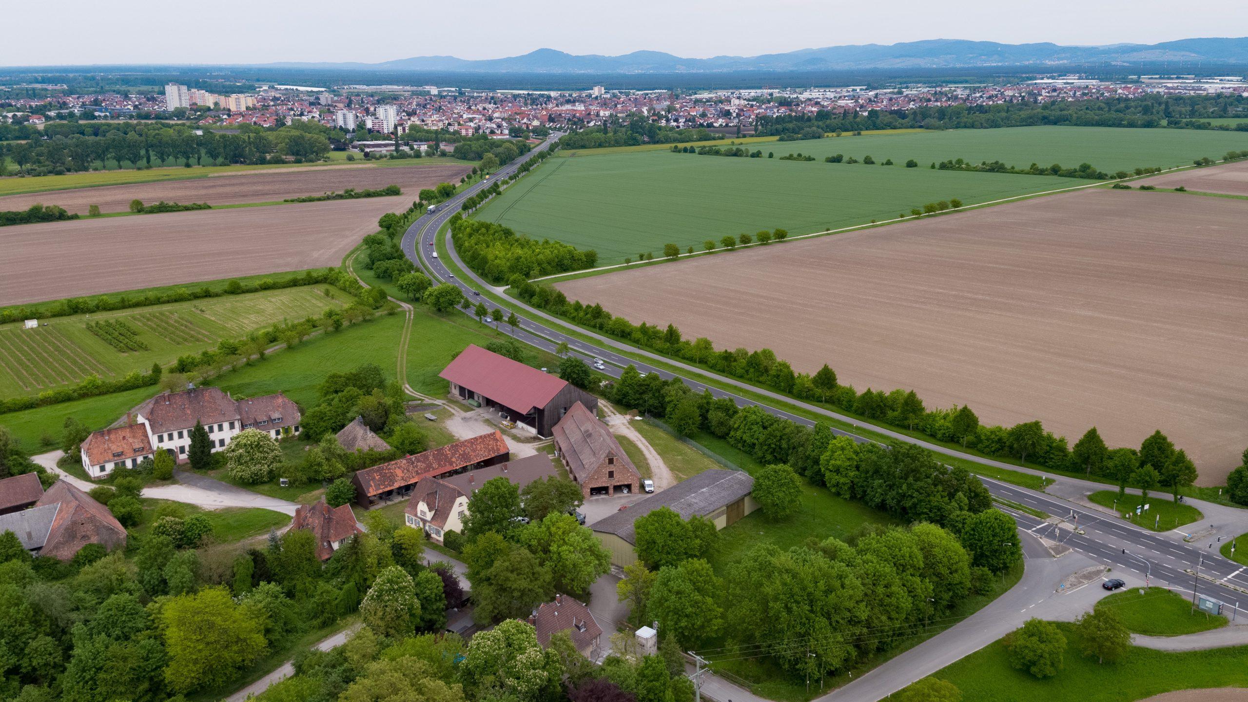 Luftbild der Landwirtschaftlichen Flächen von Kirschgartshausen (Mannheim-Sandhofen)