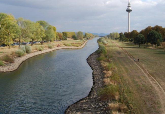 Neckar renaturiert